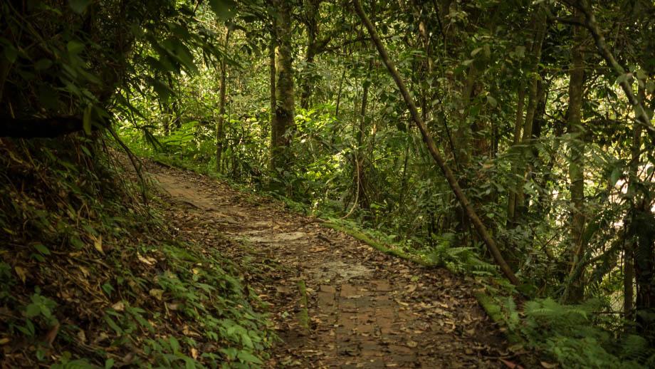 Berembun Trail 4