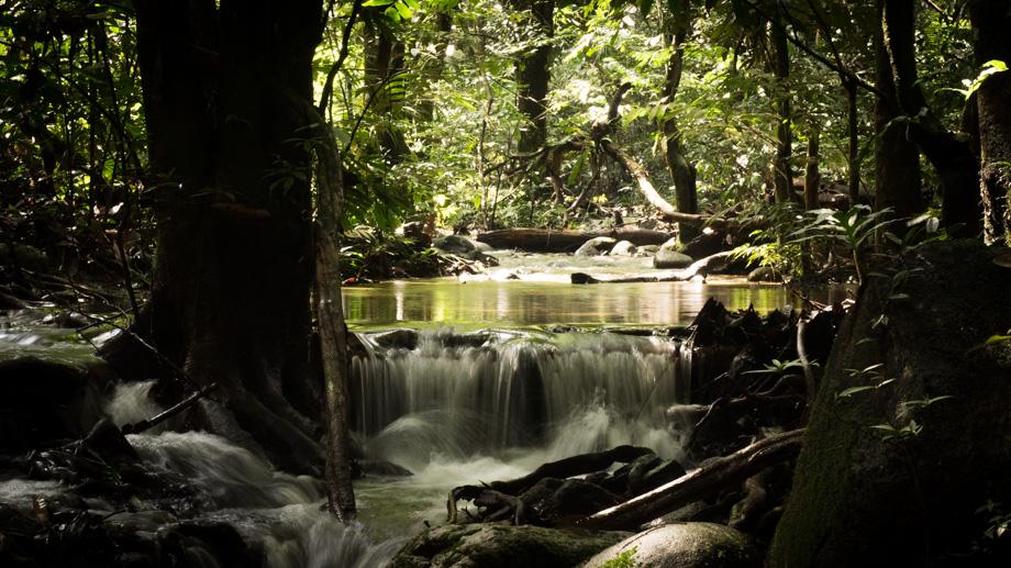 Pisang river