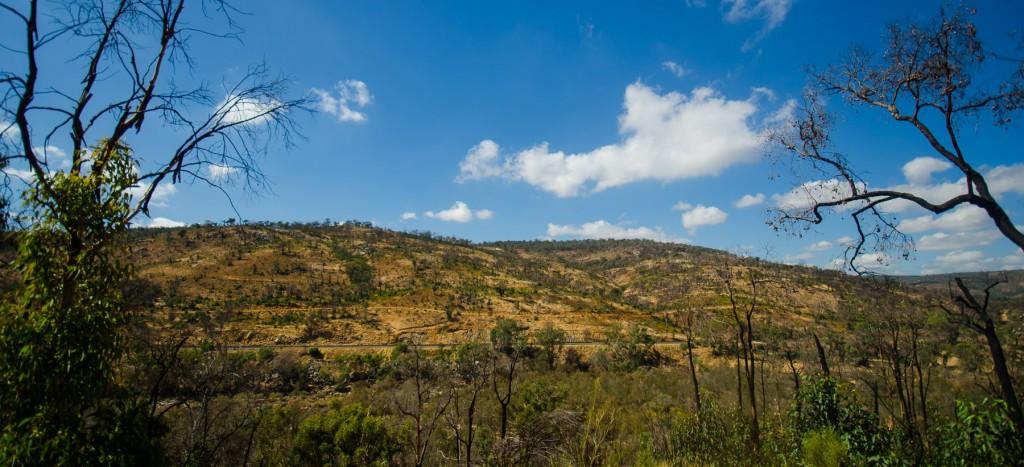 The Echidna Trail Train Tracks