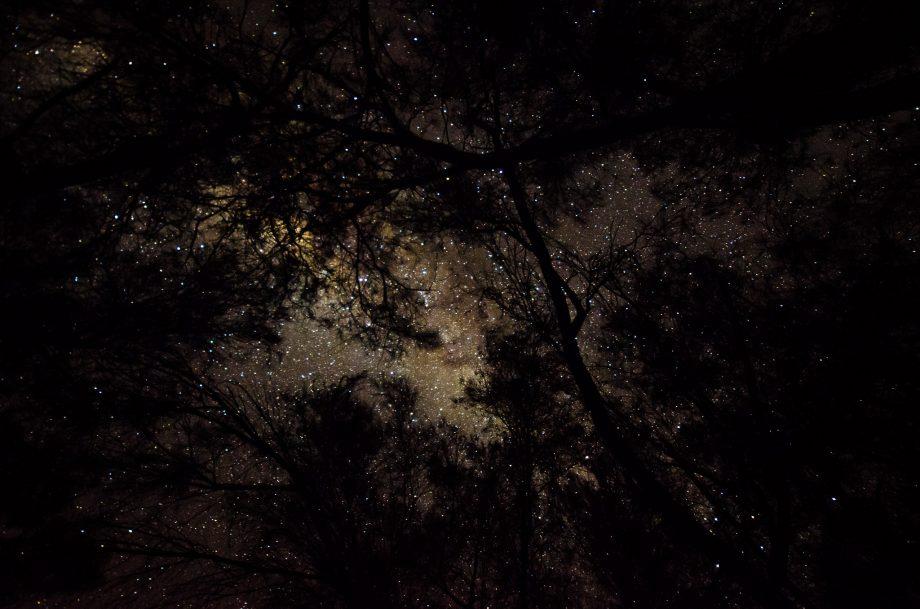 Blazing stars overhead