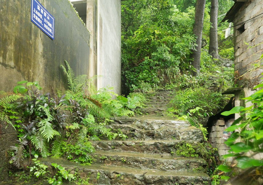 Pantao Hill stairwell