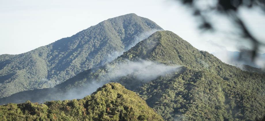 The summits of Mount Yong Yap and Bubu from Tok Nenek