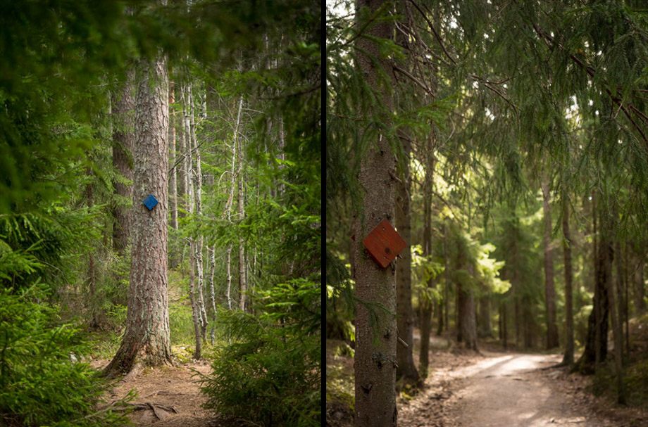 Nuuksio National Park trail markers