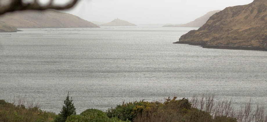 From the Killary Harbour viewpoint